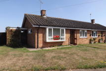 Semi-Detached Bungalow to rent in Holly Lane...