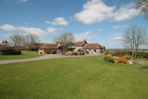 Equestrian Facility home for sale in Dunbury Lane...
