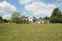 Kings Stag Equestrian Facility property for sale
