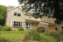 4 bedroom Detached home in Ringwood Grove...