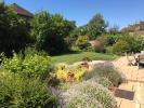 Rear Garden - V3