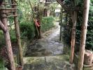 Rear Garden - View 3