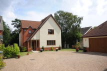 Detached house for sale in Churchfield, Walberswick