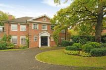 7 bed Detached property to rent in Winnington Road, London...
