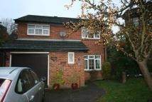 Detached property to rent in 13 Beechmore Drive