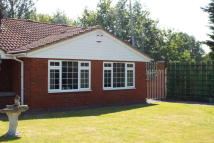 Bungalow in Otterham Quay Lane...