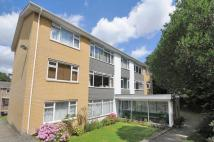 Deepdene Court Flat for sale