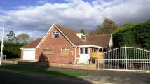 3 bed Detached house in The Crayke, Bridlington...