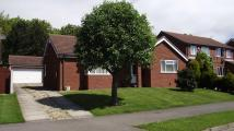 Detached Bungalow for sale in Airedale Drive...