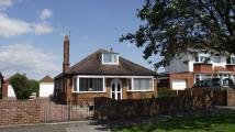 Detached Bungalow for sale in Belvedere Road...