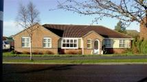 Detached Bungalow for sale in West Crayke, BRIDLINGTON...