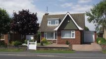 Detached Bungalow for sale in Sewerby Road...
