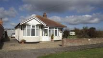 3 bedroom Detached Bungalow in Thornwick Road...