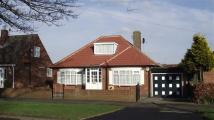 3 bed Detached Bungalow for sale in Bempton Lane...