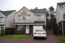 Detached house to rent in Castle Wemyss Drive...