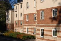 Apartment to rent in Silver Birch Wynd...