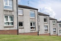 1 bed Flat to rent in Florence Street...
