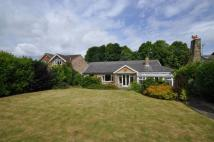 Detached Bungalow for sale in Brighouse