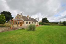Detached home for sale in Cherry Tree Farm...