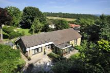 Detached Bungalow for sale in 32 Hough, Northowram...