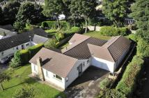 4 bedroom Detached Bungalow for sale in Rose Heath...