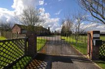 4 bedroom Detached Bungalow in Cherry Meadow Farm...
