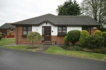 Detached Bungalow for sale in Rose Gardens...