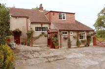 Cottage for sale in Unthank, Dalston...
