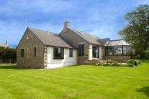 6 bed Detached Bungalow in The Paddock, Overton