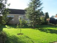 Detached Bungalow for sale in Mendlesham, IP14