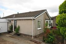 2 bed Detached Bungalow to rent in 8 Neidpath Drive...
