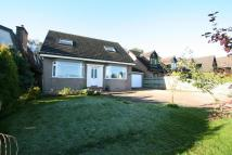 4 bed Detached property to rent in Old Woodlands Glen Road...