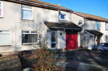 4 bed semi detached house in Drumlanrig Place...