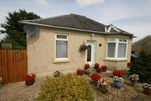 2 bed Detached Bungalow in BRAEMAR GARDENS, Falkirk...