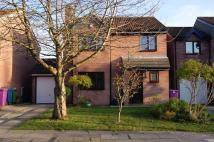 4 bed Detached house to rent in Moel Famau View...