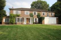 7 bedroom house in Wilmerhatch Lane, Epsom...