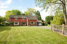 Detached property in Lower Road, Bookham...