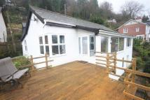 Ross-On-Wye Bungalow for sale