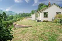 Detached Bungalow in Ross-On-Wye...