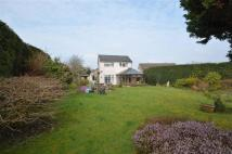 4 bed Detached property in Crow Ash Road...