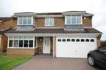 4 bedroom Detached house for sale in Castlemartin...