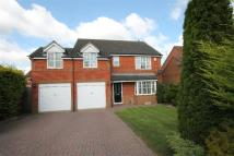 4 bed Detached property for sale in Clydach Grove...