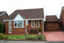 Detached property for sale in Hollybush Avenue...