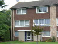 Maisonette to rent in BATH ROAD, Reading, RG1