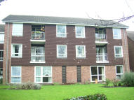 PIGGOTTS ROAD Apartment to rent