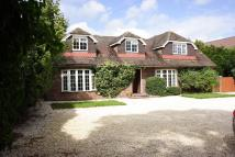 Andover Road Detached house to rent