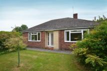 Bungalow to rent in Church Road, Woodborough...