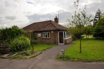 Bungalow to rent in Wilcot Road, Pewsey
