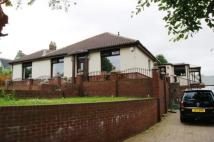 4 bed Bungalow in Border Cottage...