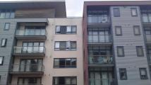 1 bedroom property in Charles Cross...